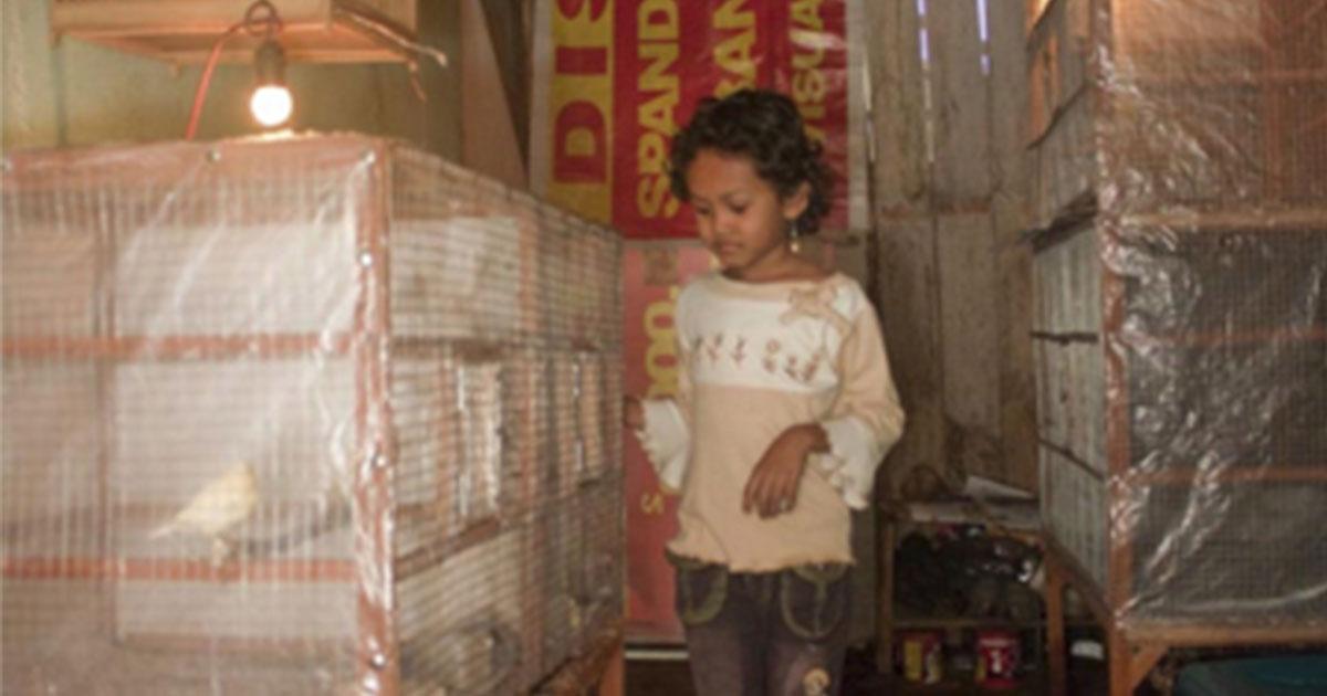 How Kids do Chores Around the Globe